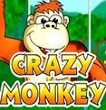 Crazy Monkey в клубе Вулкан Чемпион